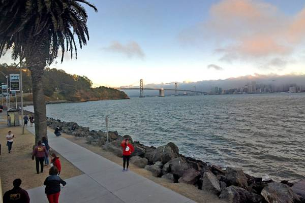 The evening Big Bus Tour stops at sunset on Treasure Island in San Francisco with the Bay Bridge in the background. ...