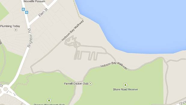 GOOGLE CAT: Marked as near Auckland's Hobson Bay walkway.
