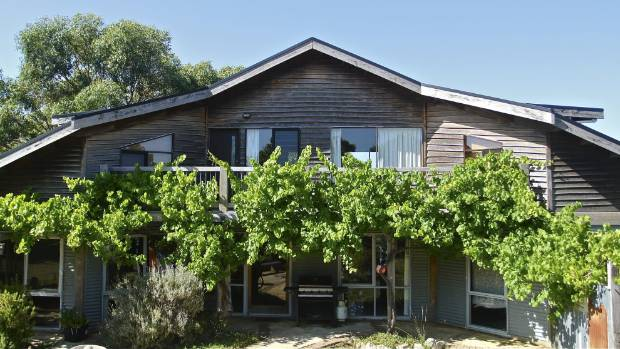 A grape vine provides summer shade for this striking home.