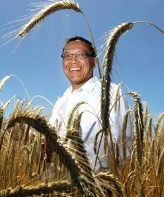 Thomas Chin, manager for the New Zealand Grain & Seed Trade Association.