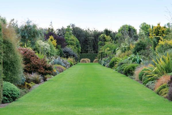 how to create a classic english garden using nz natives On nz native plants landscaping