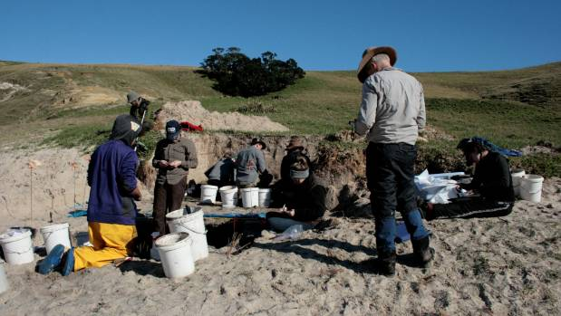 Researchers hunt for clues at an early Maori settlement on Great Mercury Island