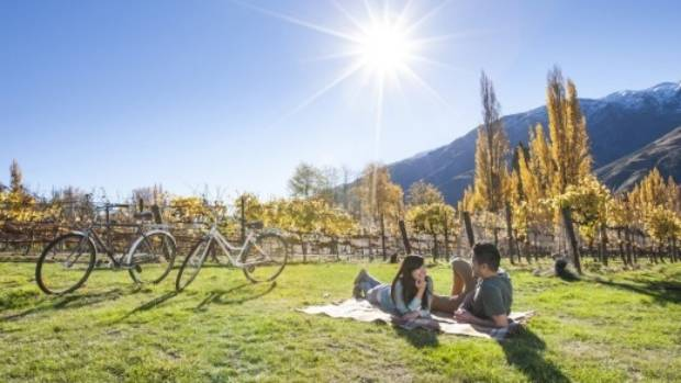 When you tire of speeding down the slopes, rent a cycle and tour the local vineyards