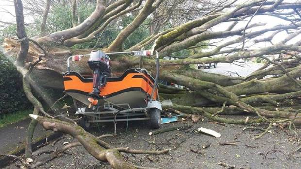 A tree at the old Gore hospital blew down across Wigan St on Sunday night taking out a boat and a truck.