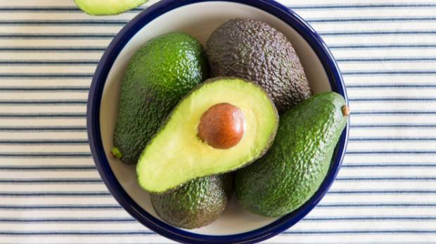 Late spring is the best time to grow avocados.