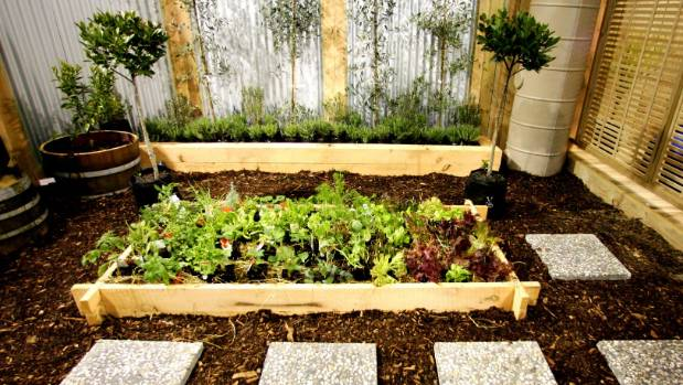 Raised garden beds are growing in popularity.