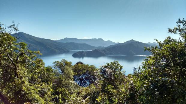 Secluded and tranquil, Queen Charlotte Sound is the perfect spot for getting back to nature with your loved one.