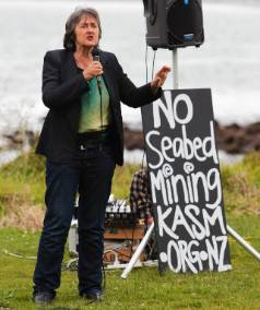 Green MP Catherine Delahunty, pictured at a seabed mining protest in 2013, has criticised the seabed mining application.