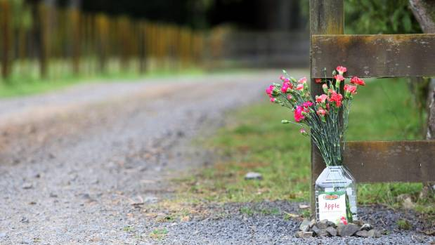 Many children have been hit and killed on Waikato driveways. This bouquet was a tribute to Isabella Thompson, 2, who was ...