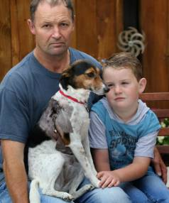 Fox terrier Diva required 50 stitches after she was attacked by another dog while out walking in Timaru with owners Kelvin Wood and son Riley, 5.