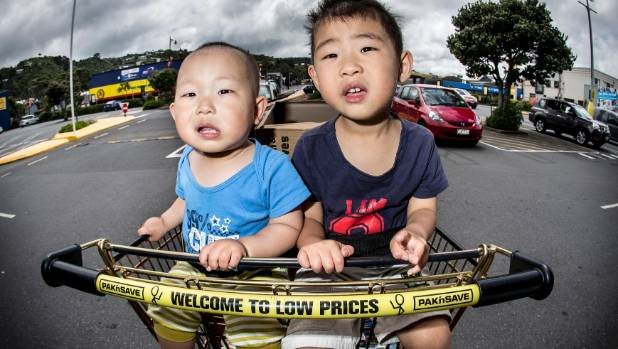 16-month-old Jacob He and his brother Zachary He, 3, were both tightly strapped into their trolley when they visited ...
