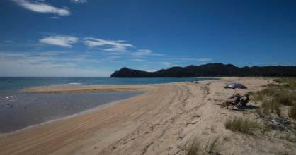 The beach that is for sale in the Awaroa Inlet. Owned by Spackman, thousands of Kiwis have contributed to a crowdfunding campaign to bring it into public ownership.