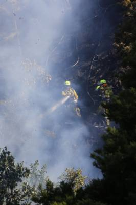 Firefighters battle a blaze in Upper Hutt.