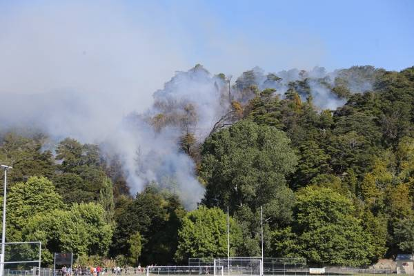 A scrub fire broke out above Maidstone Park in Upper Hutt.