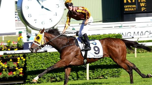Irish horses top Caulfield Cup weights