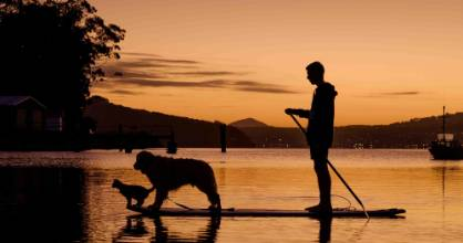 Michael Ellison on a paddleboard with Ellie the cat and Tama the dog at Macandrew Bay, Dunedin.