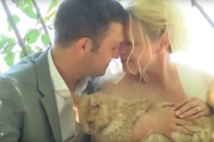 Louise Veronneau and Dominic Husso at their cat-filled wedding.