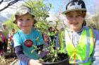 Garston School students Thomas Baker, 5, and Loretta Steyn, 11, plant a native tree at Queenstown Zoological Gardens.
