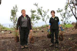 Raewyn Rogers and Eileen Flannery from the South Taranaki District's Parks for Pleasure team rescue some of the young  ...