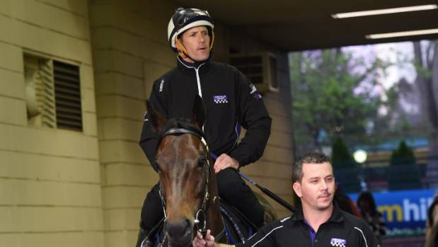 Winx fine tuning ahead of Cox Plate 2016