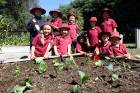 Suburban School Kaikoura's Pukeko class have been planting an edible garden which includes fruit trees and vegetables.
