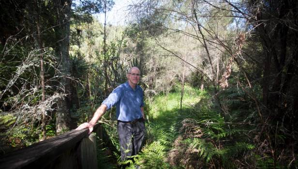 Predator-Free Hamilton Trust chairman Kemble Pudney at the Onukutara Gully, where rat and possum monitoring is taking place.