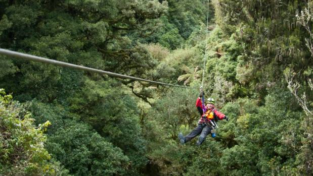 This tourist attraction, named the best in NZ, allows you to sing and swing with the native birds.