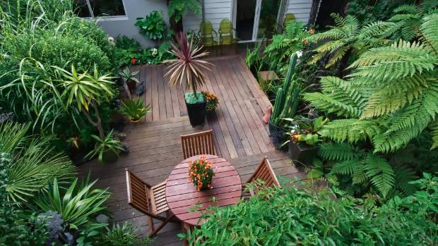 Teak is a reliable material to use for outdoor furniture. Did you spot the clear green chairs along the house? Not as ...
